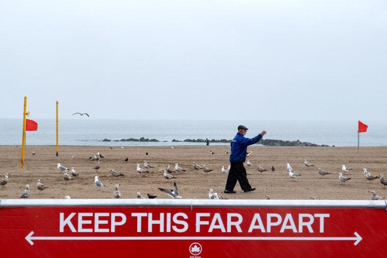 Image: A man feeds seagulls at an empty Coney Island beach in Brooklyn, N.Y., on May 23.