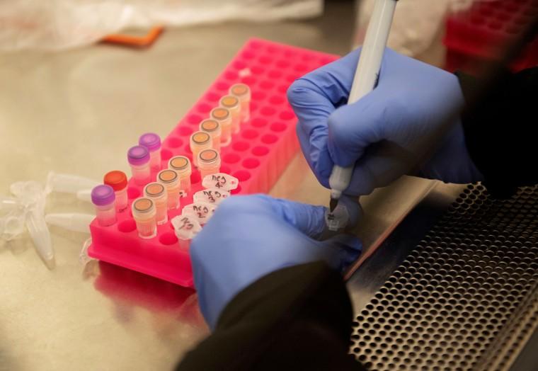 FILE PHOTO: Researchers set up new labs to help fight coronavirus at the University of Minnesota