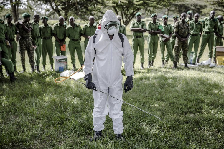 Image: Locust control in Kenya
