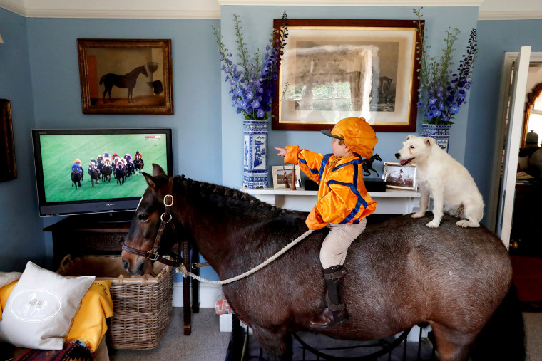 Image: Merlin Coles 3, watches the horse racing from Royal Ascot on TV at his home