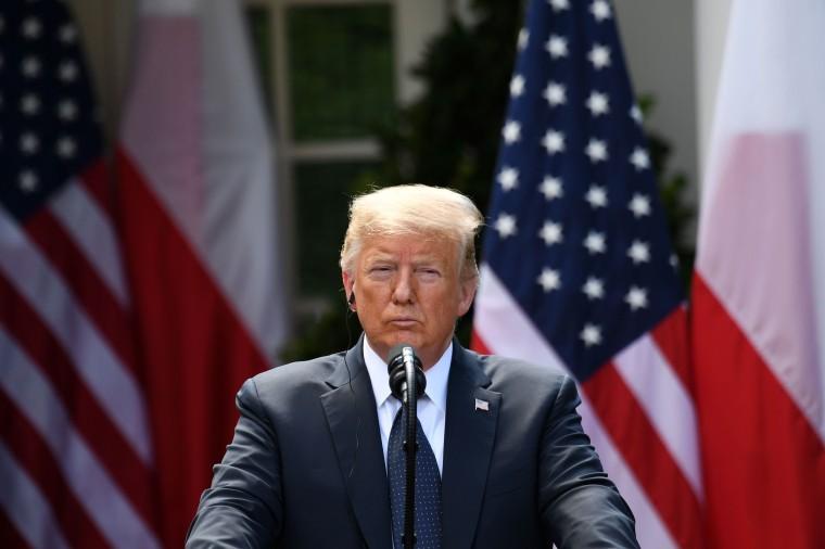 Image: Donald Trump press conference Rose Garden