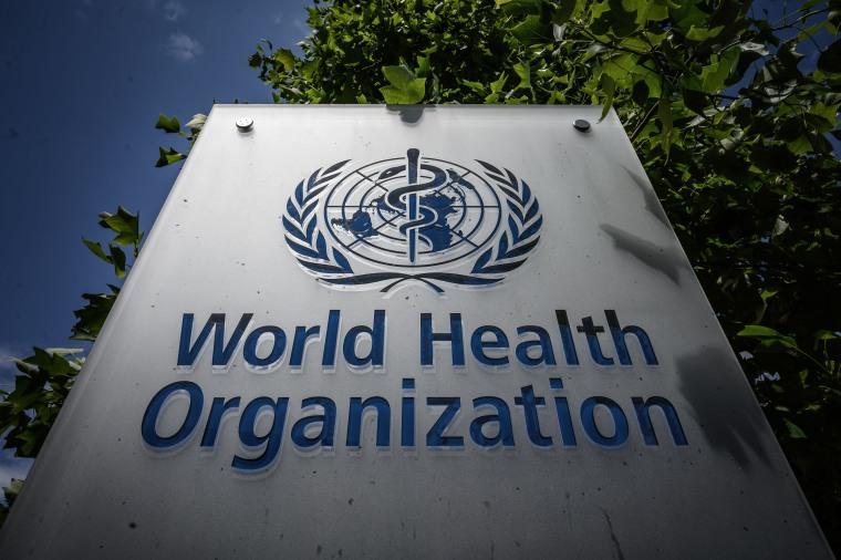 The World Health Organization headquarters headquarters in Geneva.