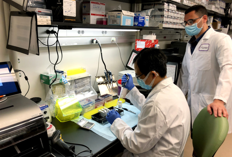 Pathologists and scientists inside the molecular laboratory at NYU Langone Medical Center test tissue samples of potentially missed COVID-19 cases, on July 10, 2020.