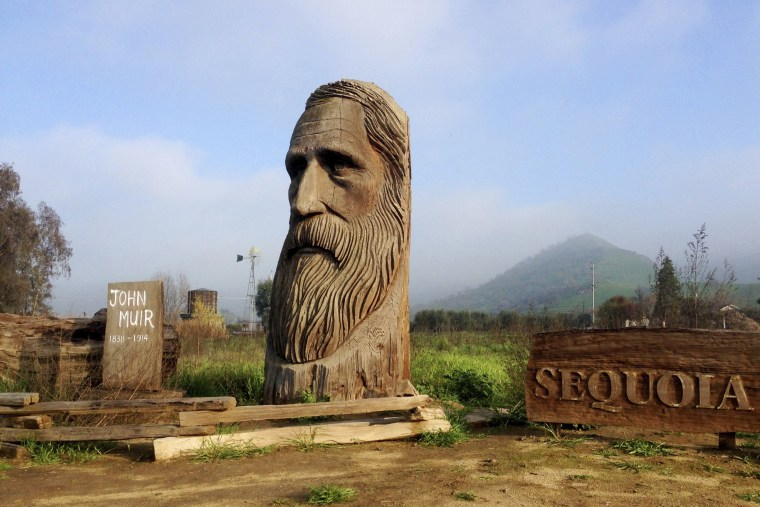 A wood-carved statue of John Muir in Sequoia National Park near Woodlake, Calif.