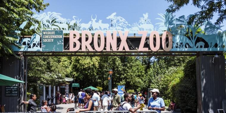 New York City, Bronx Zoo, entrance ticket taker