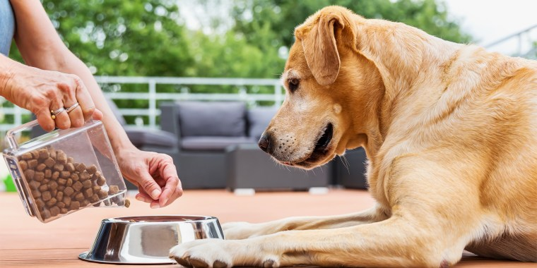 If you're thinking about switching your dog's food to recipes oriented for senior dogs, KT Boyle, DVM, suggests a slow transition to prevent upsetting your pup's stomach.