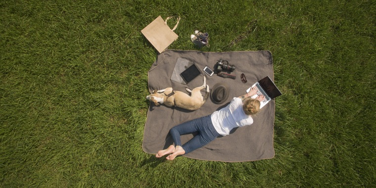 Bird's eye view of woman lying on blanket on meadow with dog using laptop