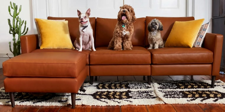Three dogs sitting on leather sofa. Shop custom, sustainable furniture at Allform including modular sofa, ottoman, pillows, and armchairs.