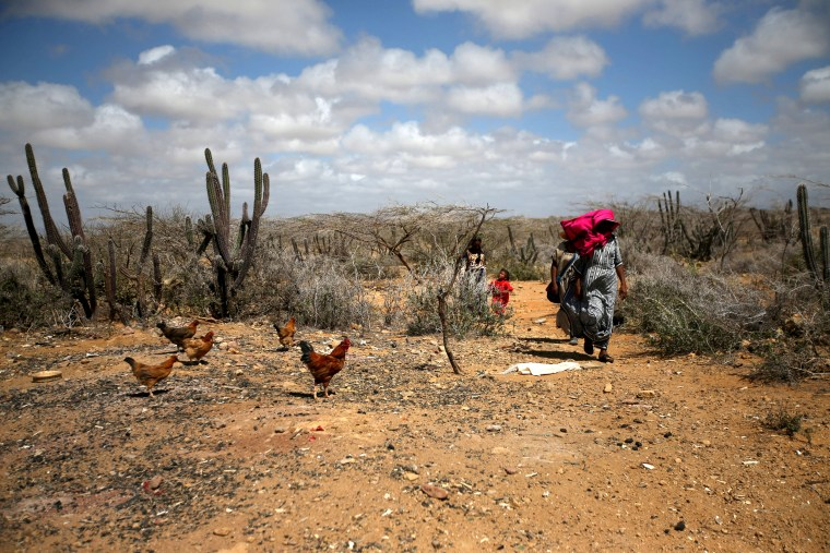 Image: FILE PHOTO: Colombian women from the indigenous Wayuu tribe walk through a desert, in Castilletes