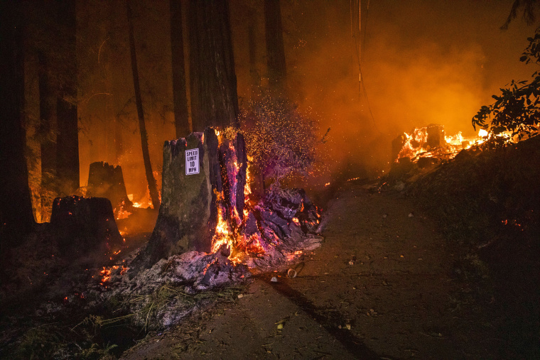 Image: California's Heat Crisis Shifts To Fires Raging Statewide