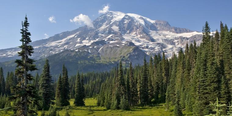 USA, Washington, Mt. Rainier National Park, Mt. Rainier