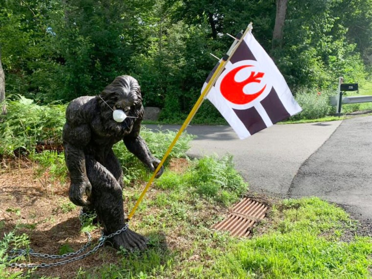 Image: Bigfoot wears a facemask while holding the Star Wars Rebel Alliance flag