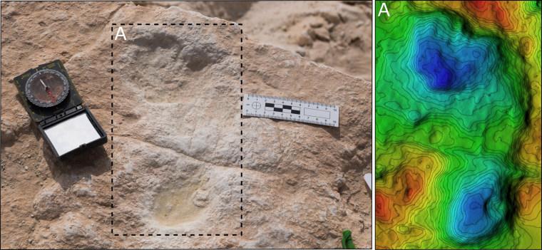 Image: First human footprint