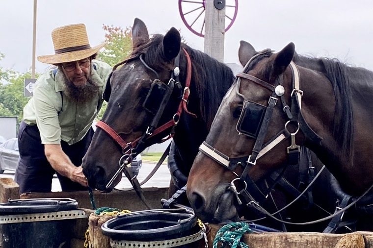 A member of the Amish community works with horses in Lancaster, Pa.