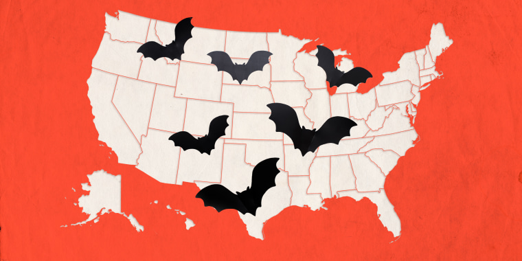 Getty Images Halloween 2020 Halloween 2020: Halloween safety guidelines in every state