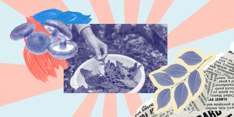 The future of America, according to an urban forager