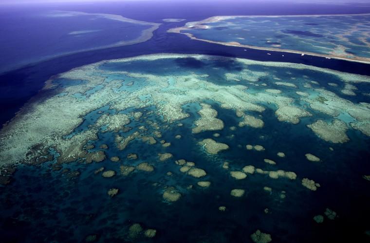Image: The Great Barrier Reef, Queensland, Australia