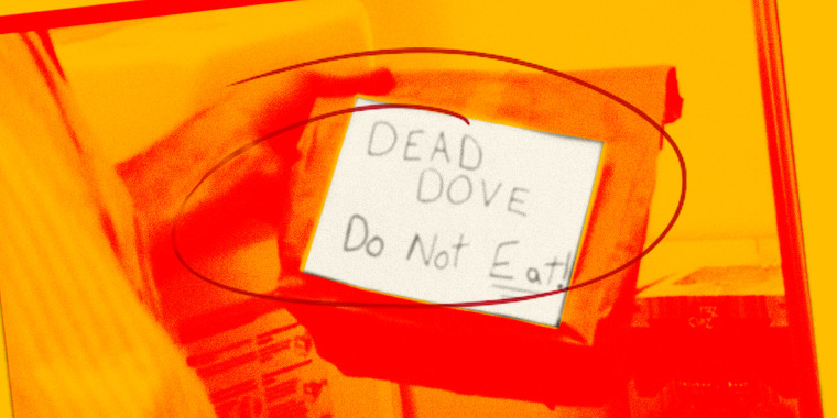 "Image: A screen grab of a hand handing holding a brown bag that reads, ""DEAD DOVE. Do Not Eat"" with a red and yellow overlay. A red circle is scribbled over it"