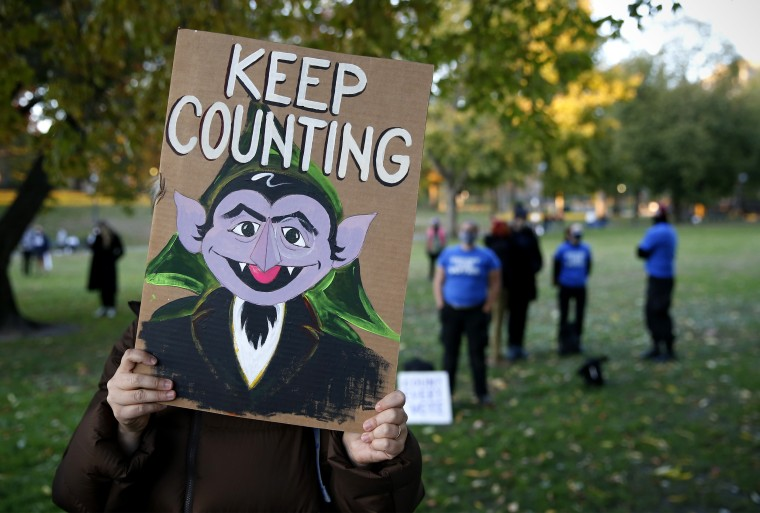 Protesters Demand Every Vote Be Counted
