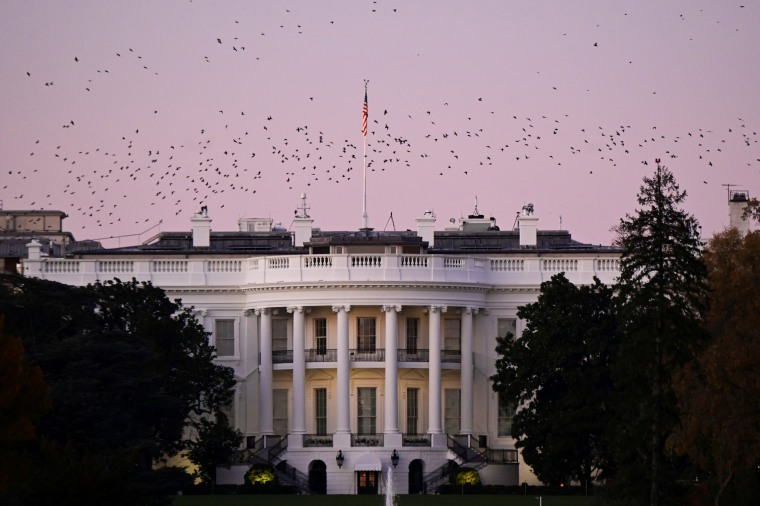 Image: Birds fly over the White House at dusk, the day after a presidential election victory was called for former Vice President Joe Biden, in Washington