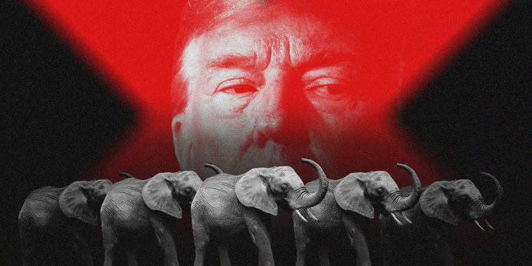Image: Trump's image with a red overlay in the background with an army of elephants in the foreground