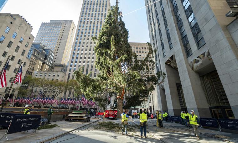 Christmas trees put on display in U.S. cities draw mockery ...