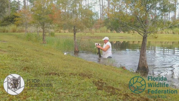 RIchard Wilbanks rescues his puppy Gunner from the mouth of a gator.
