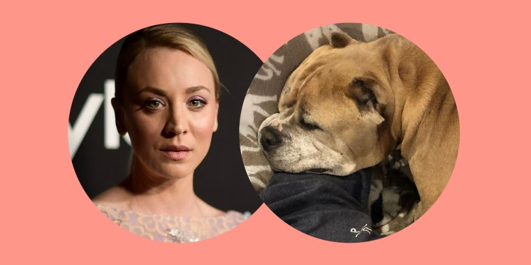 Kaley Cuoco and her husband, Karl Cook, shared the loss of their dog Petunia on social media.