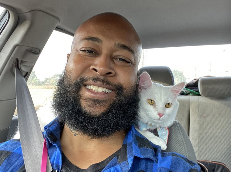 A few months ago, Davis was setting a trap for a cat that surprised him by jumping into his arms. He adopted her and named her Alanis Mewissette.