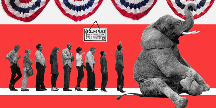 Image: An elephant sits and blocks a voting line