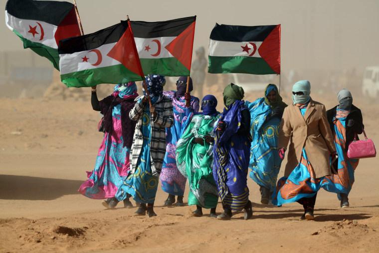 Image: Sahrawi women hold Polisario Front's flags