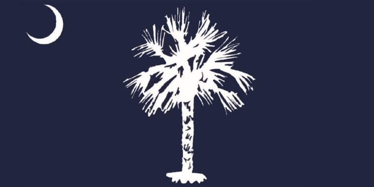 The proposed new design for the South Carolina state flag has prompted comparisons to a toilet brush and more.