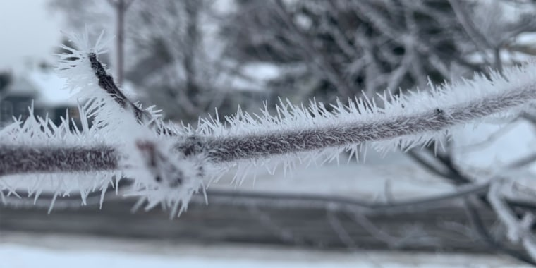 Meteorologist Joe Brooks captured a photo Wednesday of a spiky rime ice formation on a branch in Duluth, Minnesota.