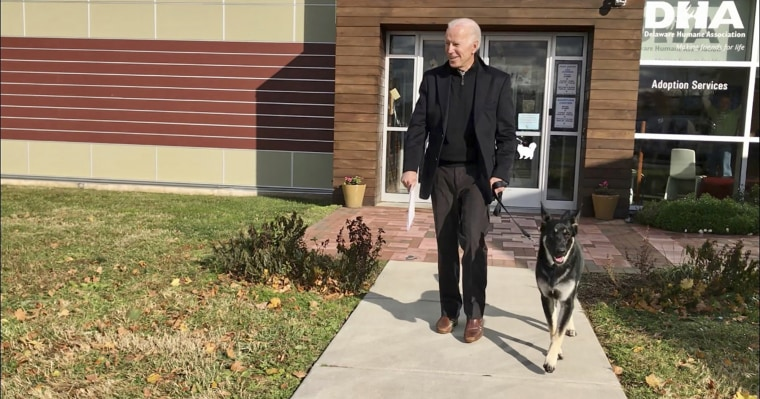 Joe Biden and his newly adopted German shepherd, Major, at the Delaware Humane Association in Wilmington in 2018.