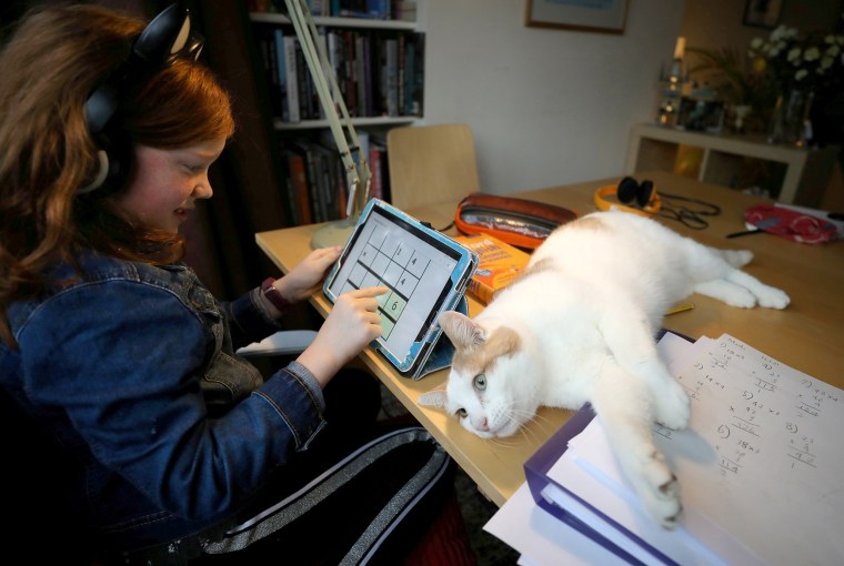 Image: 8-year-old Alice Wilkinson is joined by her cat Freddie as she does her maths online schooling in Manchester