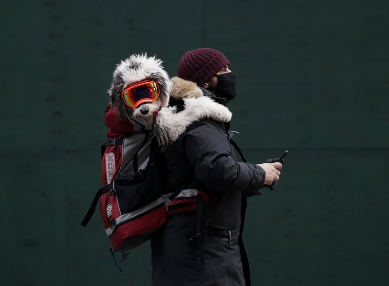 Image: Coronavirus outbreak, New York, USA - 25 Jan 2021