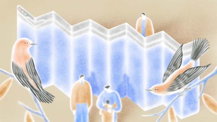 Image: Illustration of separated family members on each side of a folding video screen with birds sitting on branches.