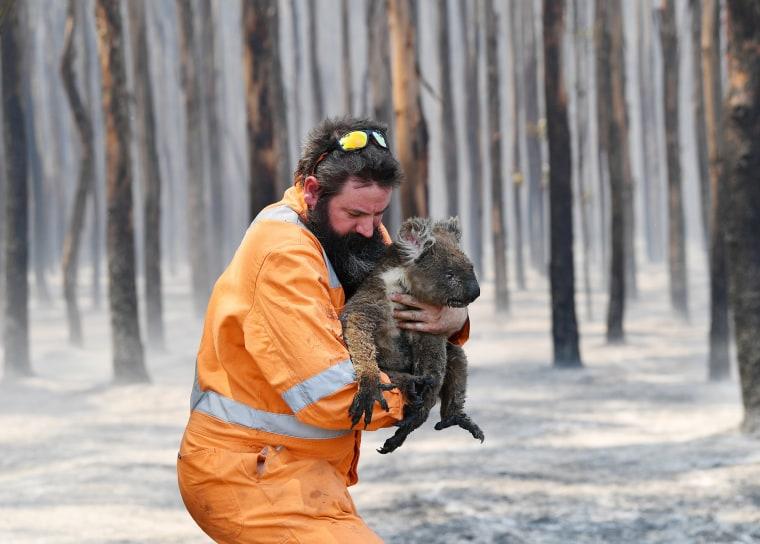 Wildlife rescuer Simon Adamczyk holds a rescued koala at a burning forest near Cape Borda on Kangaroo Island, southwest of Adelaide, Australia, on Jan. 7, 2020.