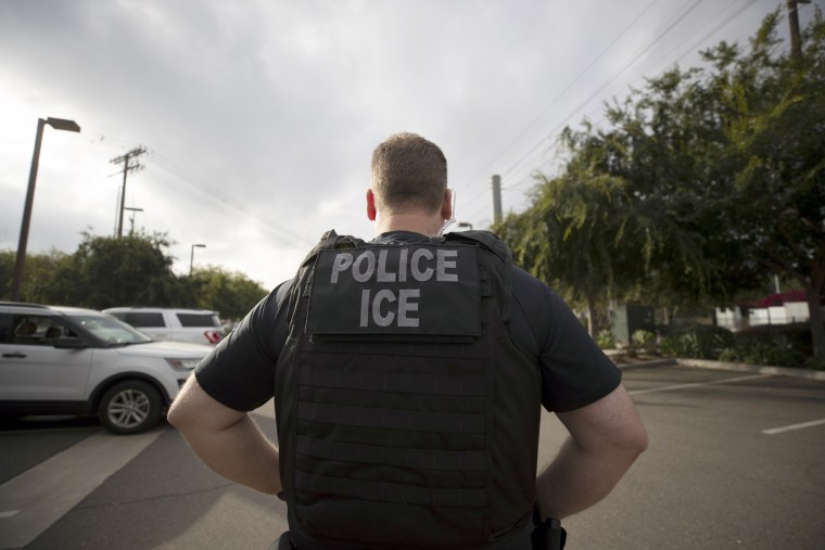 Image: Immigration and Customs Enforcement Officer