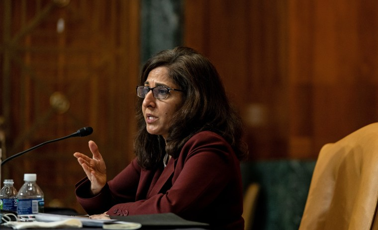 Image: Senate Budget Committee Examines OMB Director Nominee Neera Tanden
