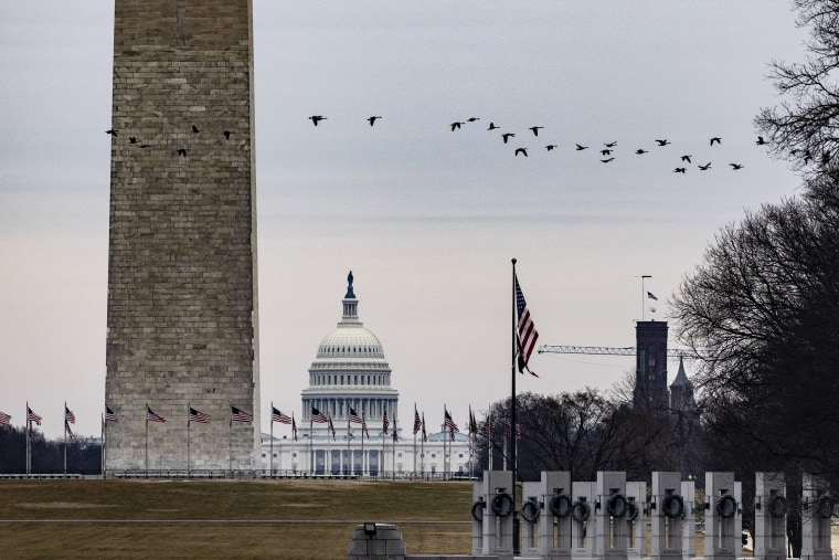 The Capitol is seen past the Washington Monument as a flock of Geese fly over the National Mall on Feb. 15, 2021.