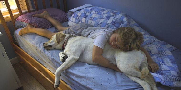 Boy sleeping on bed with dog