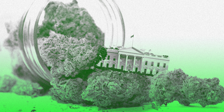 Photo illustration of marijuana spilling out of an open jar and a the White House in the middle of it.