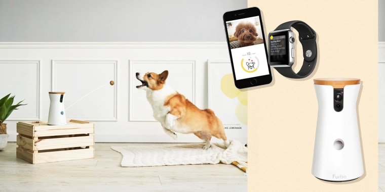 The Furbo Dog Camera is a great solution for owners with troublesome pets. Learn why to buy a pet camera and see the best cameras from Blink, Petcube and more.