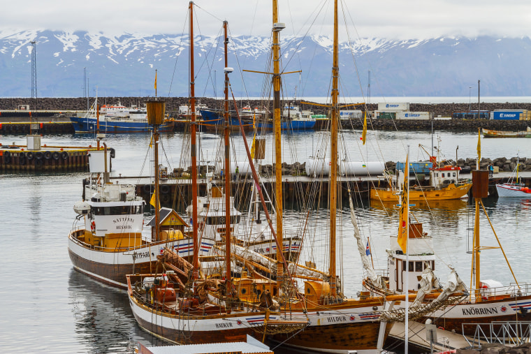 "Image: Husavik on Iceland's north coast has become the ""whale capital"" of the country."