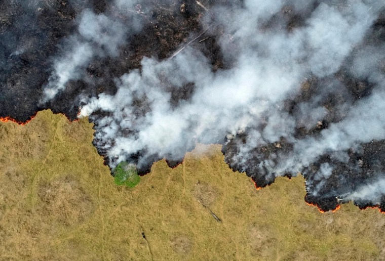 Image: Billows of smoke rise over a deforested plot of the Amazon in Porto Velho, Brazil, on Aug. 24, 2019.