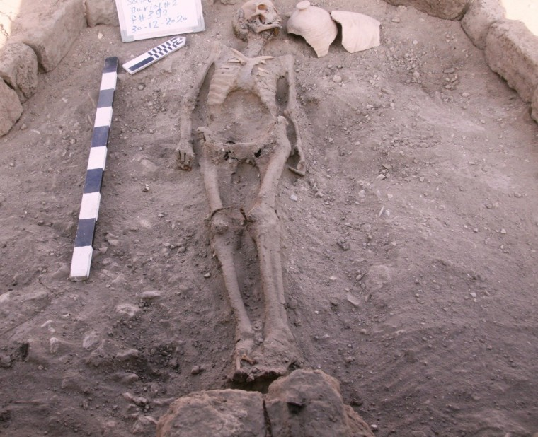 Image: A skeletal human remain is seen in                      Luxor