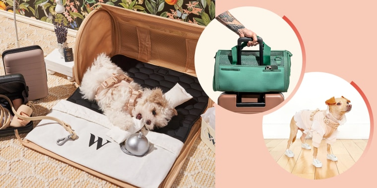 Illustration of a dog wearing a pink Wild One harness for under 10 pound dogs, a man wheeling the Spruce Travel Carrier in Green on his suitcase and Boobie Blillie the small dog wearing a harness