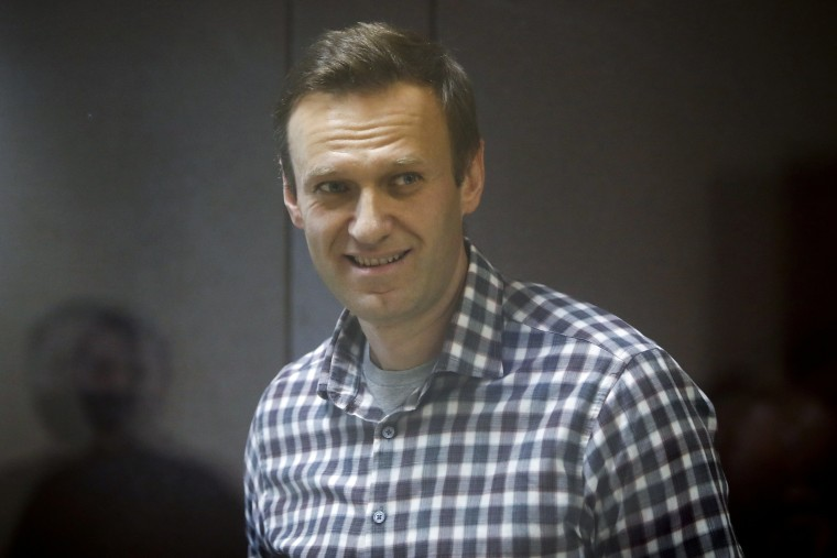 Image: FILE PHOTO: Russian opposition leader Alexei Navalny hearing to consider an appeal against an earlier court decision to change his suspended sentence to a real prison term