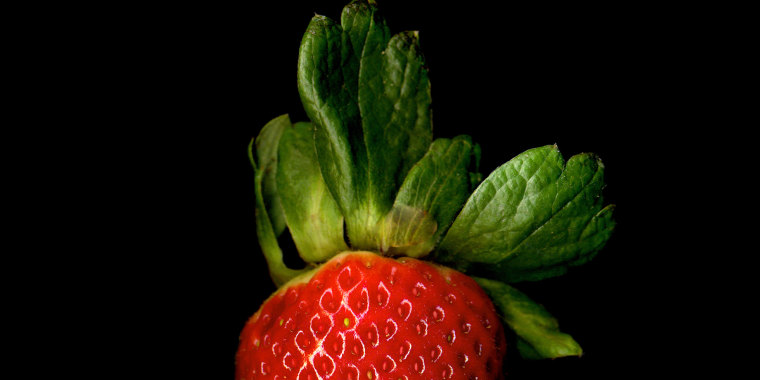Juicy and sweet, this strawberries make their debut in spring and is harvested through the beginning of summer.